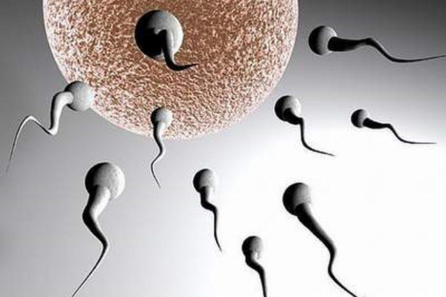 Thuốc và sản phẩm giúp tăng cường hormon sinh dục nam