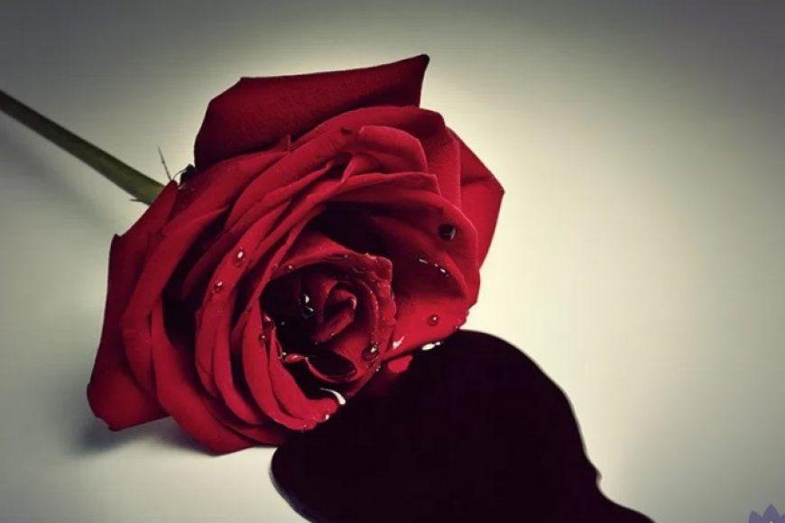 Huyết đen –  dấu hiệu đáng lưu tâm của chị em